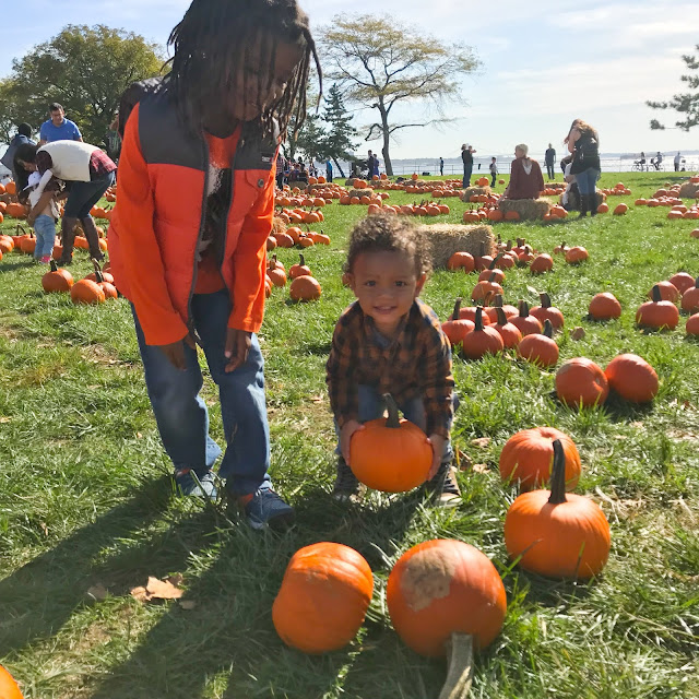 A Visit to Governors Island Pumpkin Point