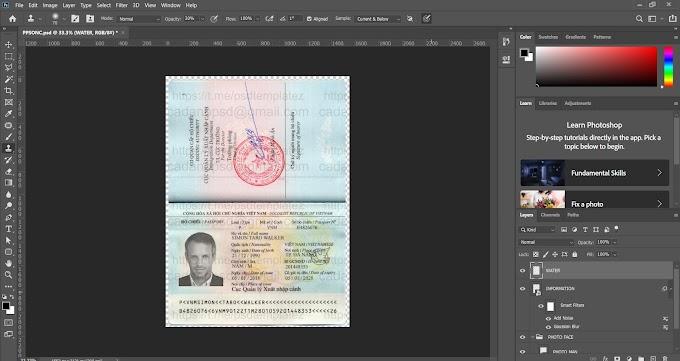 VN PASSPORT EDITABLE PSD PHOTOSHOP FILES