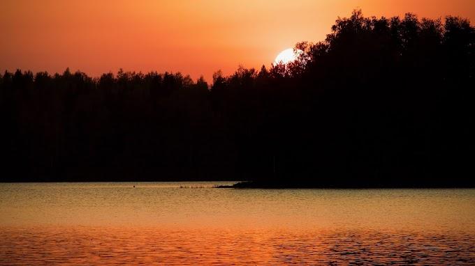 Lago, Silhueta das Árvores, Pôr do Sol, Crepúsculo