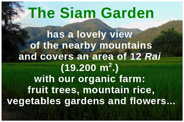Permaculture farming