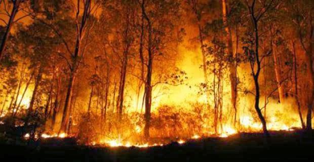 Kebakaran di Indonesia