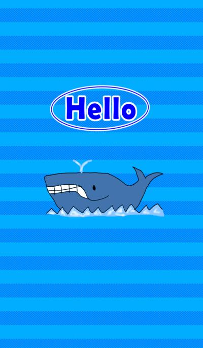 Hello Whale