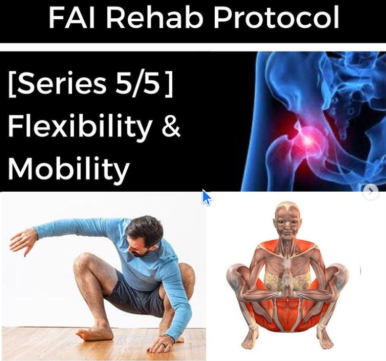 FAI Rehab Protocol Part 5: Flexibility and Mobility - themanualtherapist.com