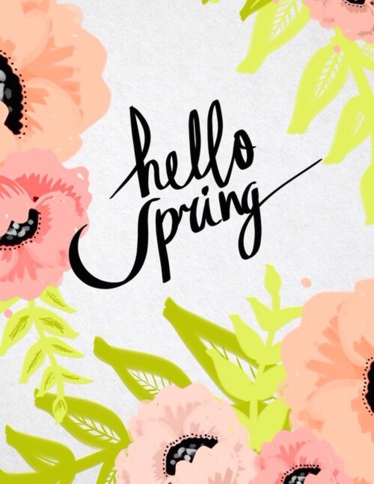 Hello-Spring-2016-Vivi-Brizuela-PinkOrchidMakeup