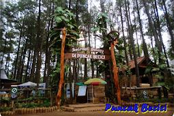 Menikmati uniknya Destinasi wisata Gunung Kidul yang jarang diketahui wisatawan