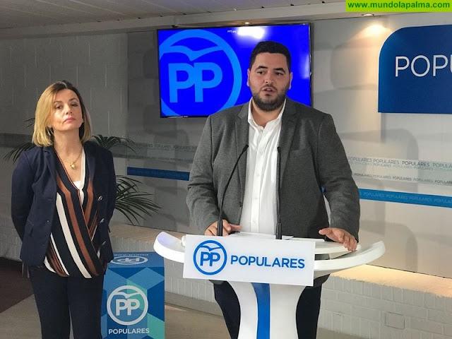 """Alejandro Sánchez: """"Votar NO a los Presupuestos Generales del Estado es votar en contra de los jóvenes de Canarias"""""""