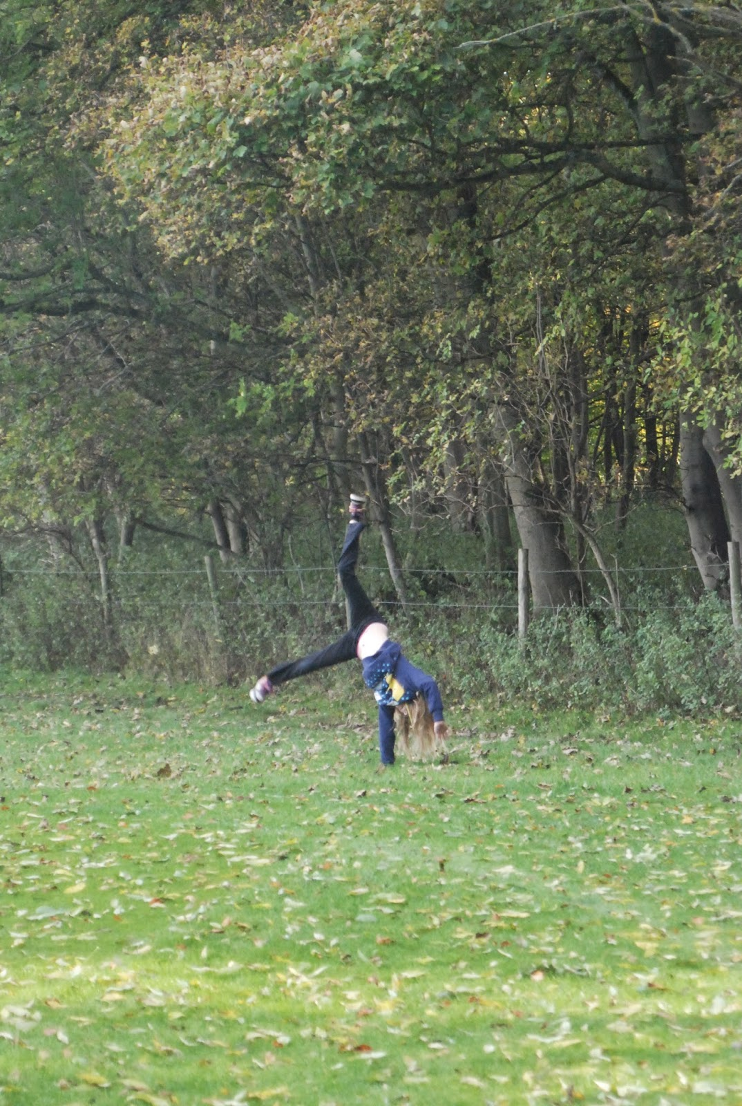 cartwheels on autumn fall walk