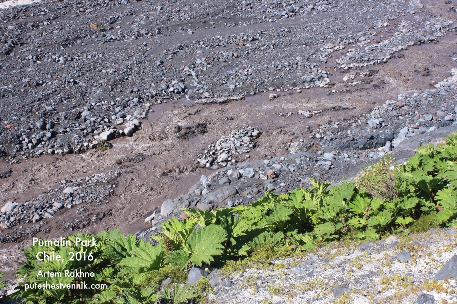 Река с пеплом вулкана Мичинмахуида