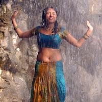 Meenakshi hot pics in wet saree