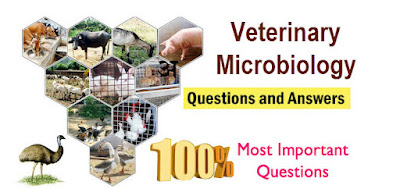 veterinary microbiology MCQS part I