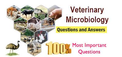Veterinary Microbiology Question bank III