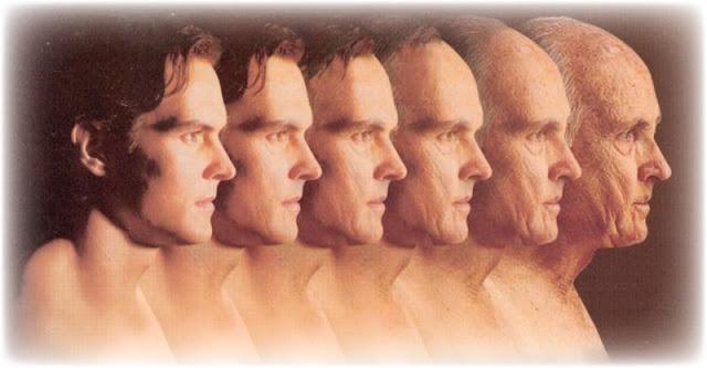 envelhecimento metropolitana df - Por que nós envelhecemos?