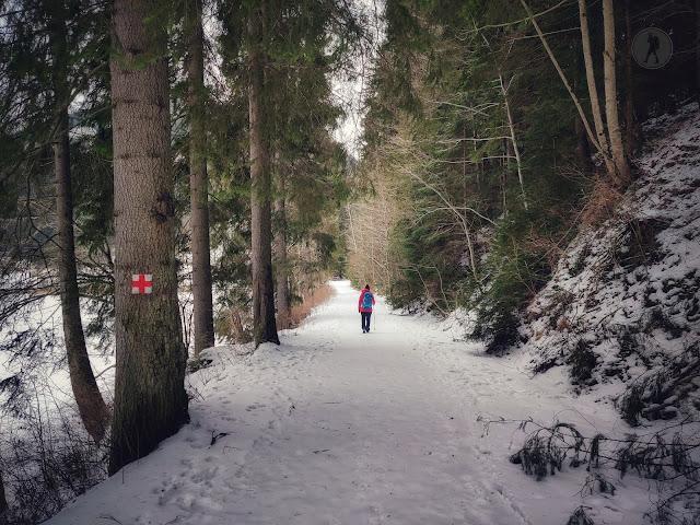 Traseu circular în jurul Lacului Roșu