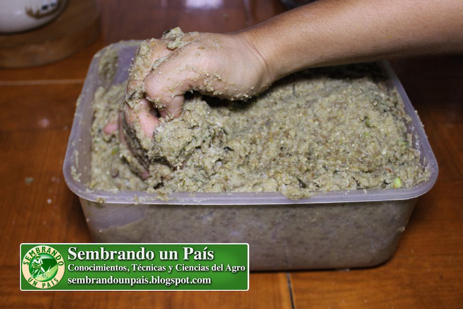 amasado de harina y granos