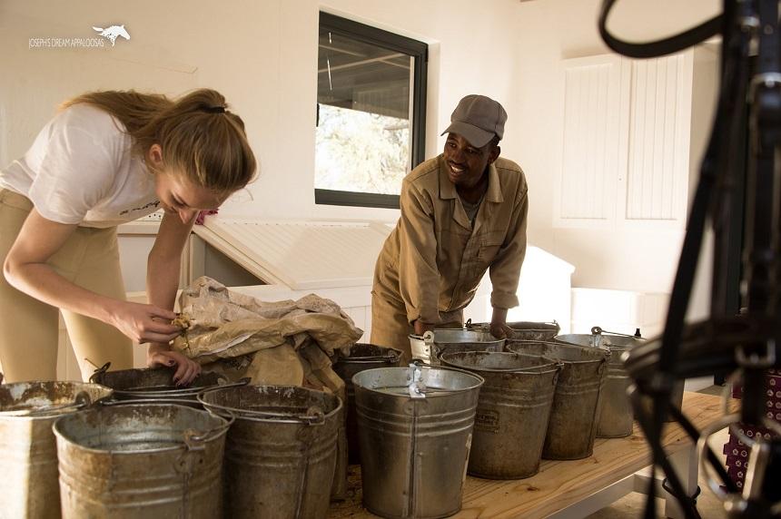 volontaria, volontariato, ranch, namibia, africa, alloggi, dare da mangiare ai cavalli, equitazione naturale, programmi di volontariato