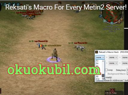 Metin2 Reksati 1.0 Makro Hilesi STEAM-PVP İndir Çalışan Bot 2020
