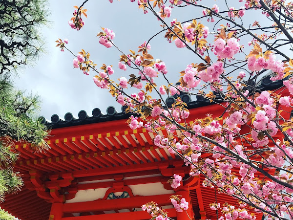 11 of the Best Things to Experience in Kyoto, Japan