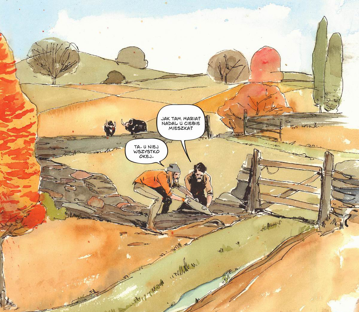 grass kings, recenzja komiksu, non stop comics