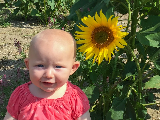 A baby sitting next to a sunflower