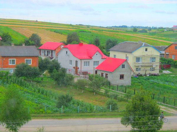 Houses near fields and fruit trees