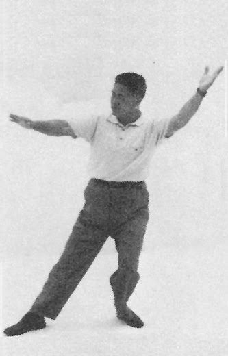 Tai Chi Chuan (Square Form) 6. Flying Oblique