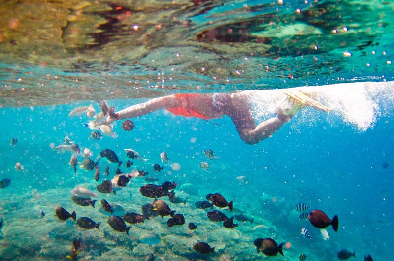 Biaya Wisata ke Gili Nanggu Lombok