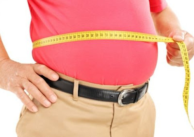Find Out the Variety of Causes of Stomach Fat