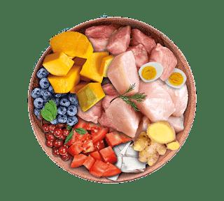 Nutrique Perros precios y opiniones