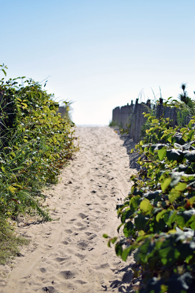 walkway_vandyke_dewey_beach_delaware