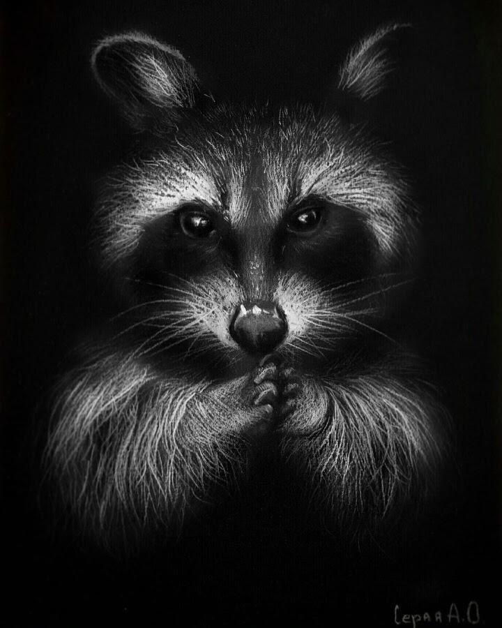 06-Raccoon-ingenious-master-plan-Анастасия-Серая-www-designstack-co