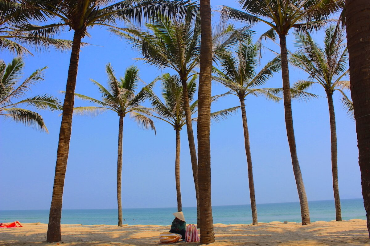 hoi an beach with palm trees