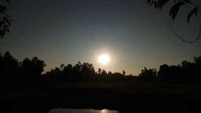 Picture of the afternoon sun