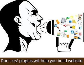 WordPress plugins help you build a website