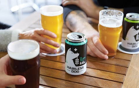 Review: Hairless Dog Nonalcoholic Beer
