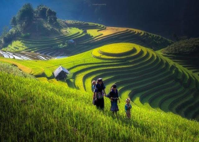 gambar mewarnai pemandangan alam yang indah mari