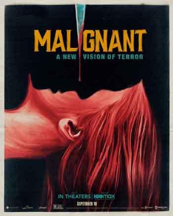 Malignant 2021 480p 300MB BRRip Dual Audio [Hindi - English] MKV