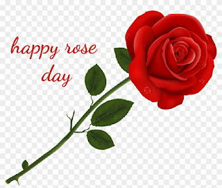 Happy-Rose-Day-2019-PNG-Images