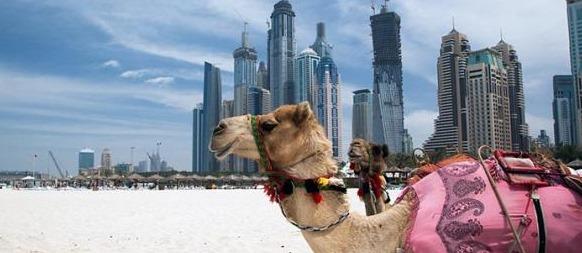 افضل الاماكن السياحية في الامارات