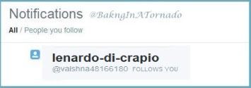 Lenardo-di-CRAPio twitter follow. Some people have way too much time on their hands | www.BakingInATornado.com | #humor #funny