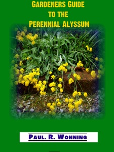 Gardener's Guide to the Perennial Alyssum