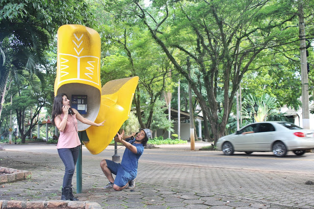 Rua de Holambra, em São Paulo.