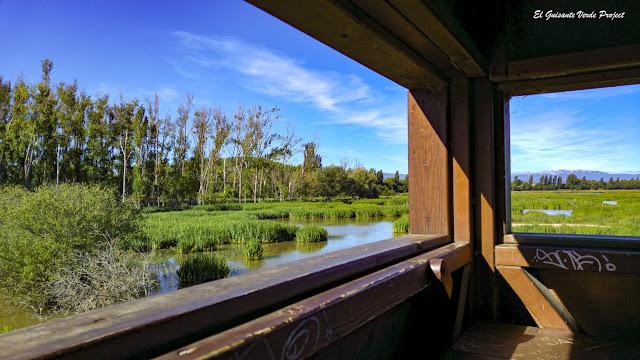 Parque de Salburua, interior observatorio de aves