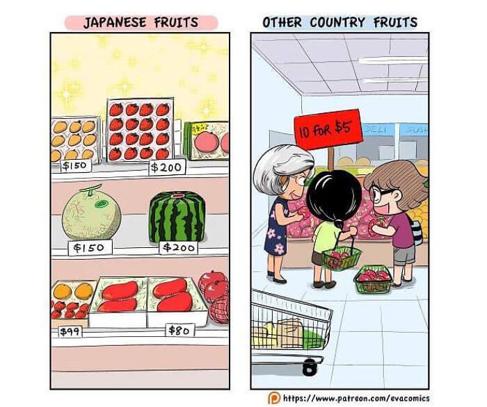 30 Funny Comics That Depict The Cultural Differences Between Japan And The Rest Of The World