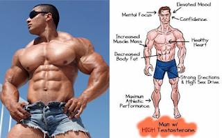 5 Best Testosterone Boosters