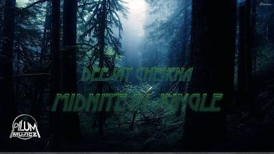 Deejay Cheikna - Midnite in Jungle
