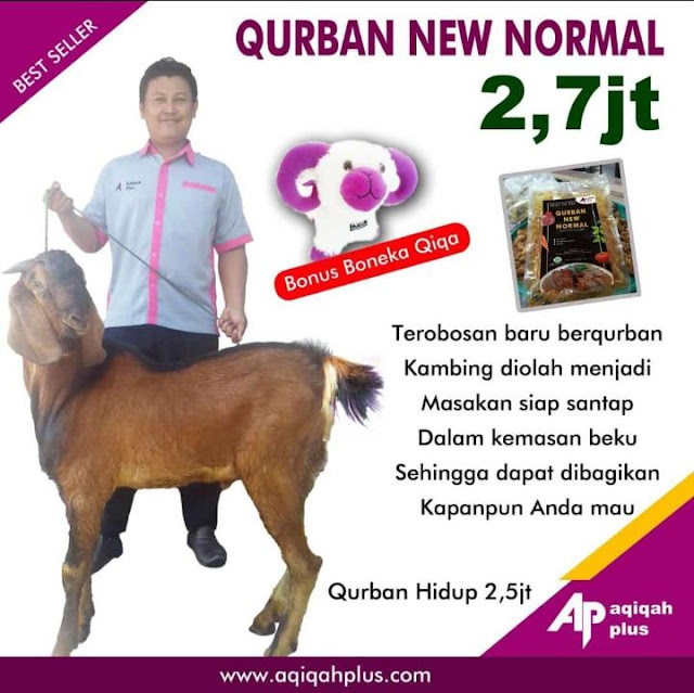 Harga Kambing Qurban di Tegal New Normal