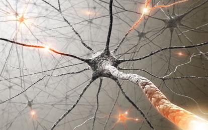 Bệnh động kinh là gì và những biểu hiện