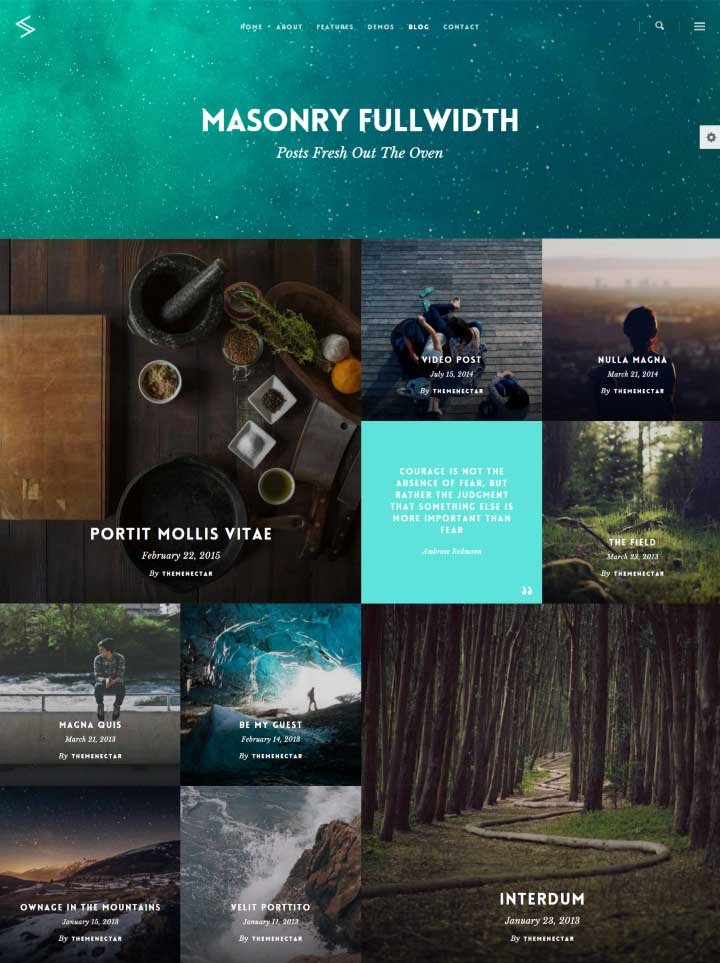 Salient Multipurpose Theme