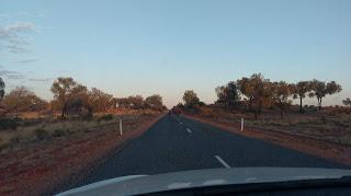 Mało nie przejechaliśmy wielbłąda w Australii