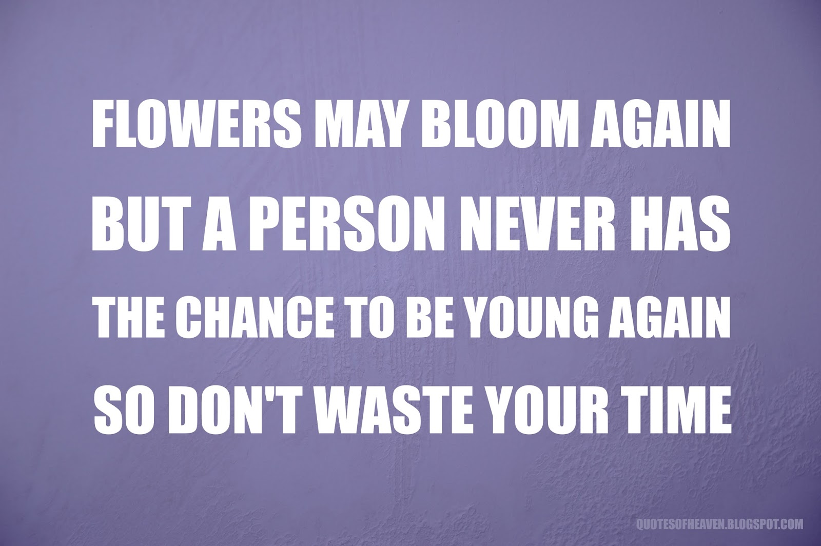 Quotes From Heaven Flowers May Bloom Again But A Person Never Has
